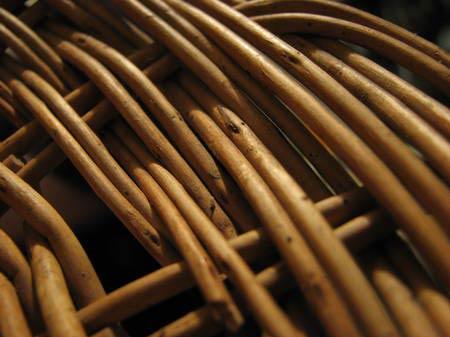 Ива. Сырьё для плетения мебели и аксессуаров