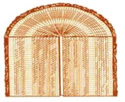 Пороки древесины. Внутренняя заболонь