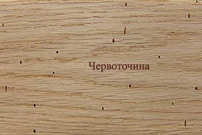 Пороки древесины. Червоточина
