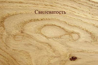 Пороки древесины. Свилеватость